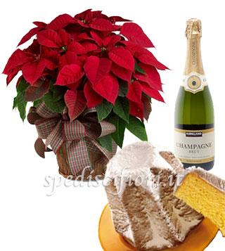 stella-di-natale-con-pandoro-e-champagne