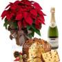 stella-di-natale-con-panettone-e-champagne