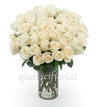 bouquet-di-50-rose-bianche