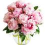 bouquet-di-peonie