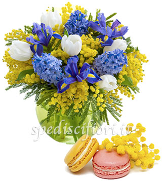 bouquet-di-mimose-iris-e-tulipani-con-macaron